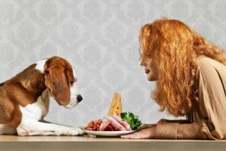 il nostro amore per lui comprende anche la scelta che facciamo per la sua alimentazione.